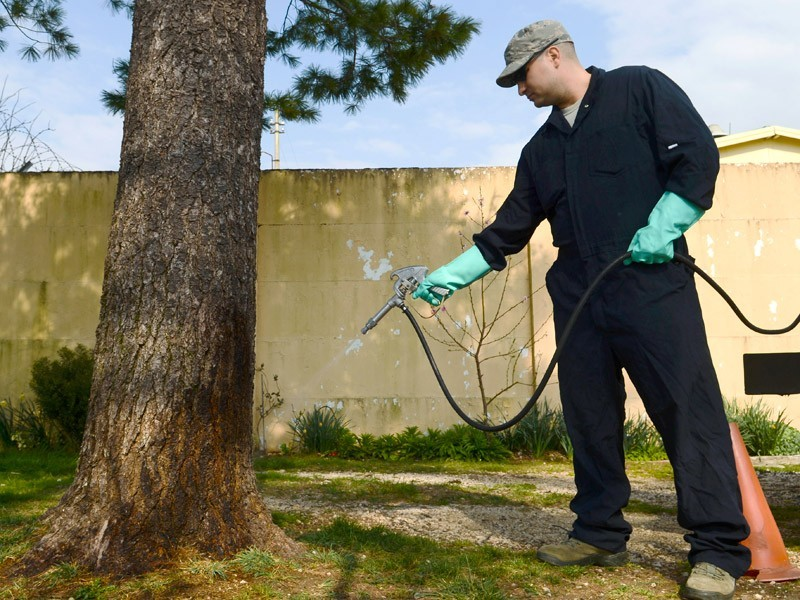 Pest Control and your Privacy